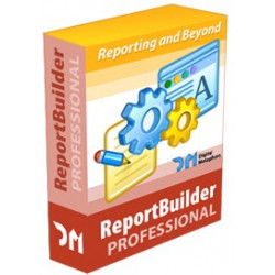 REPORT BUILDER PROFESSIONAL