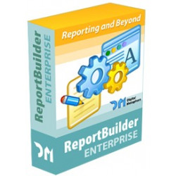 REPORT BUILDER ENTERPRISE