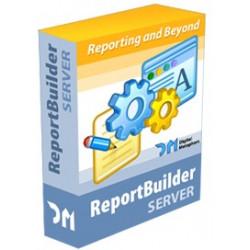 REPORT BUILDER SERVER