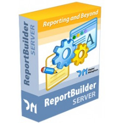 REPORT BUILDER 16 SERVER - Deployment License