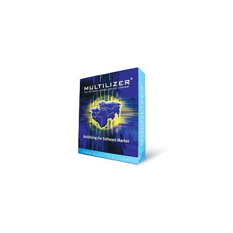 MULTILIZER Pro per Sviluppatori, licenza singola