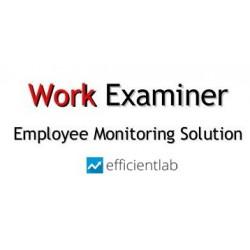 Work Examiner Standard