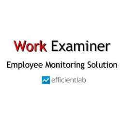 Work Examiner Professional