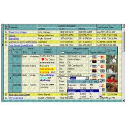 INFOPOWER STUDIO VCL per Delphi e C++Builder